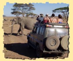 safari uganda trek