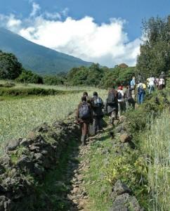 Tourists on the Batwa trail