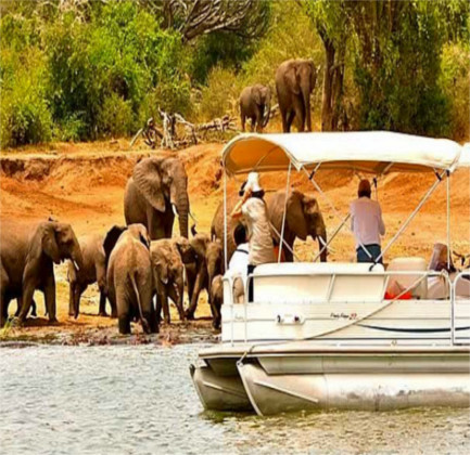 Do you want to go on a boat safari?