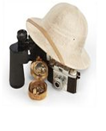 Bimoculars, camera, and a wide brim hat; totally important