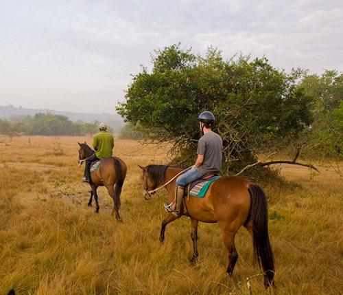 horseback safaris uganda