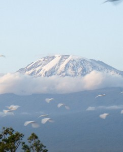 Mount Kilimanjaro; one of the popular tourist attractions in Tanzania