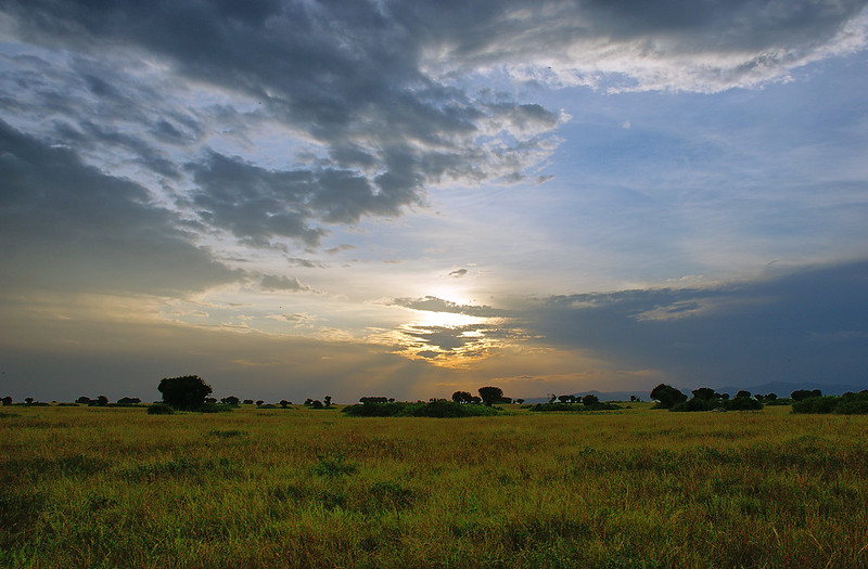 safari tours uganda